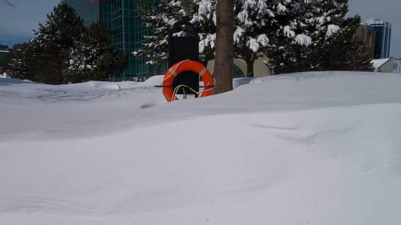 Help! Snow!