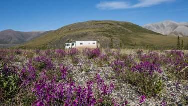 Wir finden überall tolle «Campingplätze».