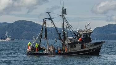 Lachsfischer vor Valdez. Ja, es hat wieder Fische…