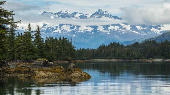 Ursprüngliche Landschaft im Prince William Sound.