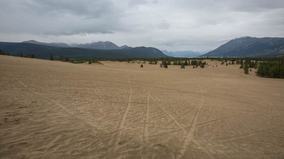 Mitten in Canada: Carcross Desert.