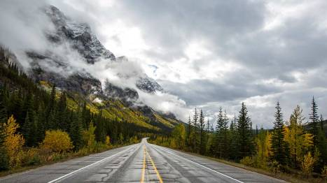 Icefields Parkway meets Indian Summer.