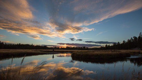 Sonnenuntergan beim Norris Campground im Yellowstone National Park.
