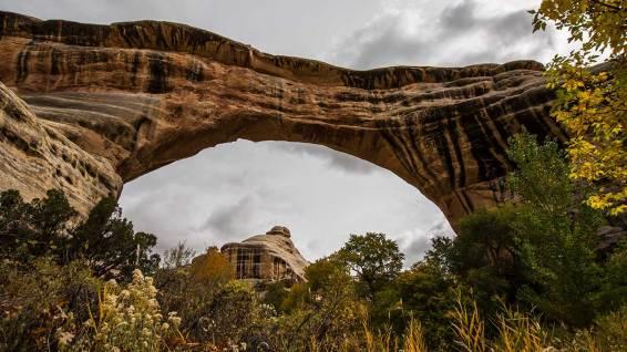 Diese eindrücklichen Gesteinsformationen werden Natural Bridges genannt.