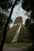 Tikal gewinnt den Preis für die steilsten Steinhaufen.