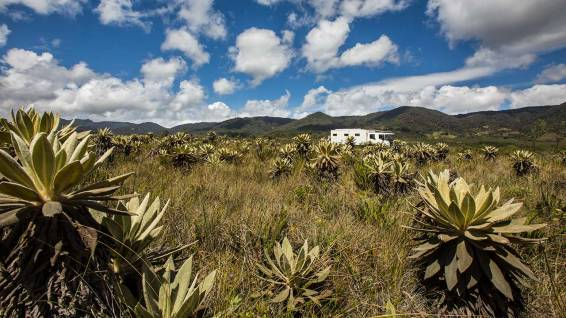 Zum vierten Mal überqueren wir die Anden... die Strassen gehen auf über 3800 Meter hoch.