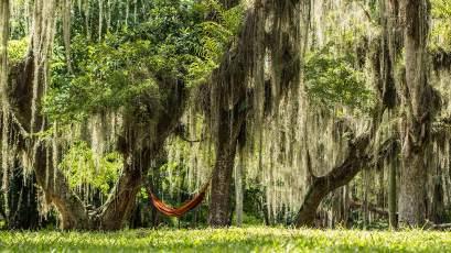 Wir relaxen im Zauberwald.