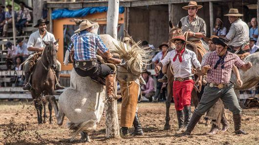 Der Höhepunkt des Festivals ist das Rodeo-Reiten.
