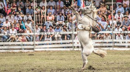 Gelingt einem Reiter ein besonders guter Ritt beim Rodeo…