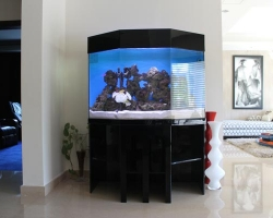 acrylic-fish-tank-001
