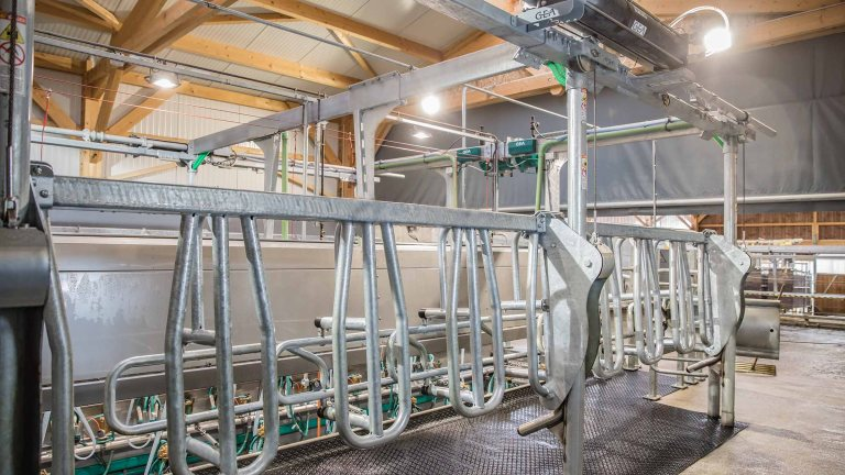 gea-dairyparlor-P7550-vl-vertical-lift-side-by-side-conventional-milking-parlor-exit-gate_tcm11-48258