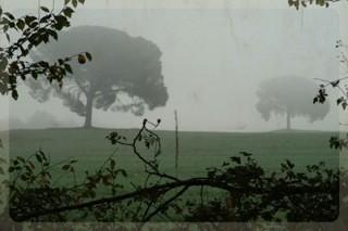 paesaggio11 17x25