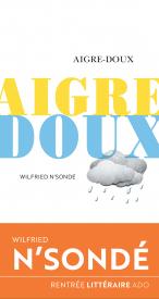Aigre Doux de Wilfried N'Sondé