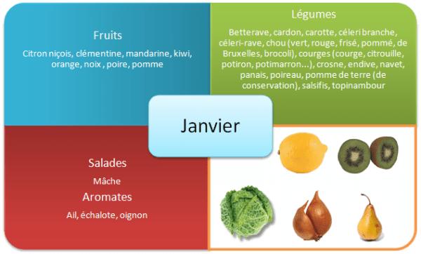 https://i1.wp.com/www.acteurdurable.org/wp-content/uploads/2009/05/fruits-et-legumes-hiver-janvier1.png?w=600