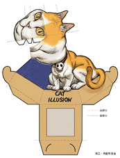 cat_illusion1
