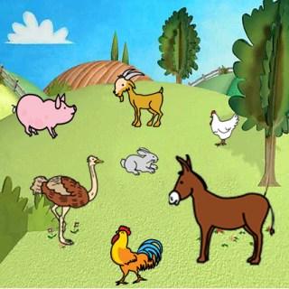 separar_animales