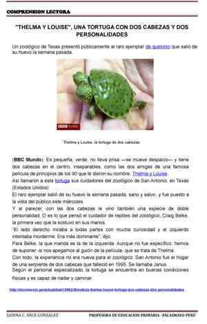 TEXTOS COMPRENSION LECTORA-Tortugas