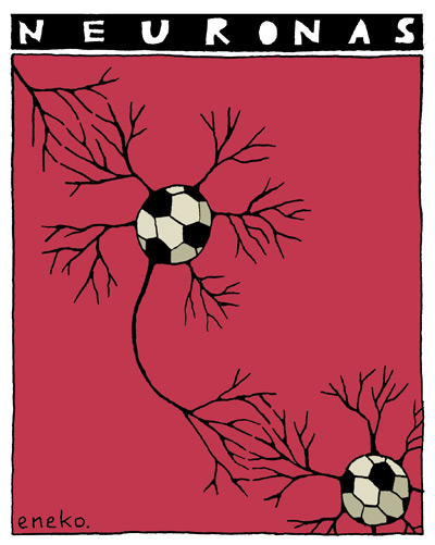 11-04-29neuronas