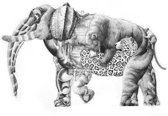 super elefante