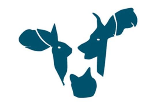cowspace