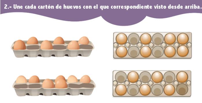 Misma cantidad de huevos 2