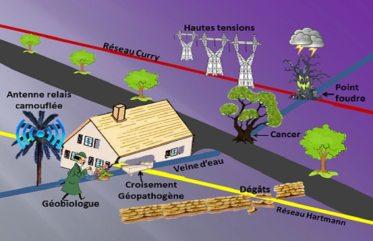 Géobiologie Intégrale - Nocivités pour la Santé