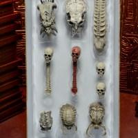 51497-Predator-SkullPack-1.jpg