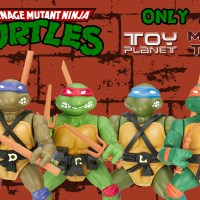 Turtles Only At 02