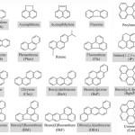 Πολυκυκλικοί Αρωματικοί Υδρογονάνθρακες (PAH's)