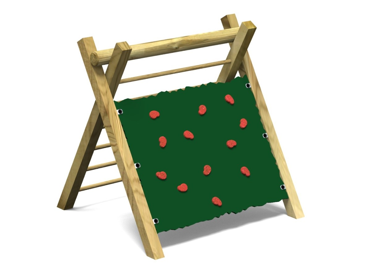 Inclined Climbing Wall with Ladder