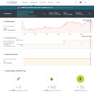Fitbit Charge HR Dashboard Training Statistic