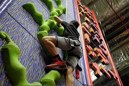 Triffid climb