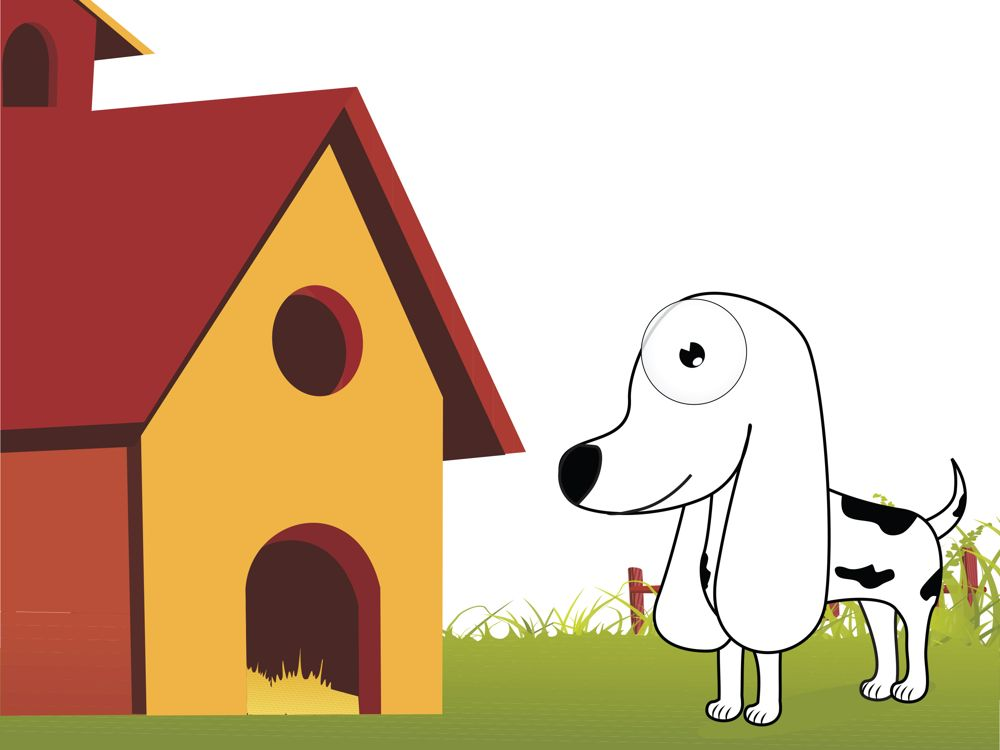 Best Insulated Dog House