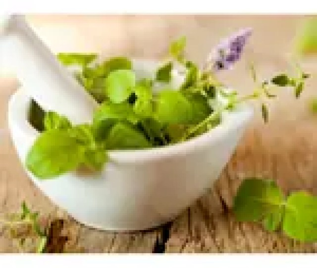 Although There Is No Magic Pill That Will Melt Excess Weight Away Here Are Some Herbs That Can Help You In Your Quest To Reach A Healthy Weight