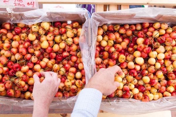 Farmers Market Week Rainier cherries