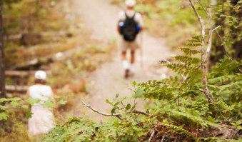 Fall Hikes in Washington: 7 Trail Ideas for Seeing Fall Colors This Season