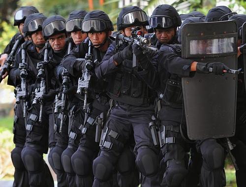 """Vaizdo rezultatas pagal užklausą """"Police Rapid Response Booms"""""""