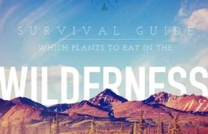WildernessSurvivalGuide-620x400