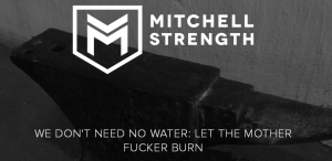 FireShot Screen Capture #089 - 'WE DON'T NEED NO WATER_ LET THE MOTHER FUCKER BURN — Mitchell Strength' - www_mitchellstrength_co_za_blog_2015_12_1_we