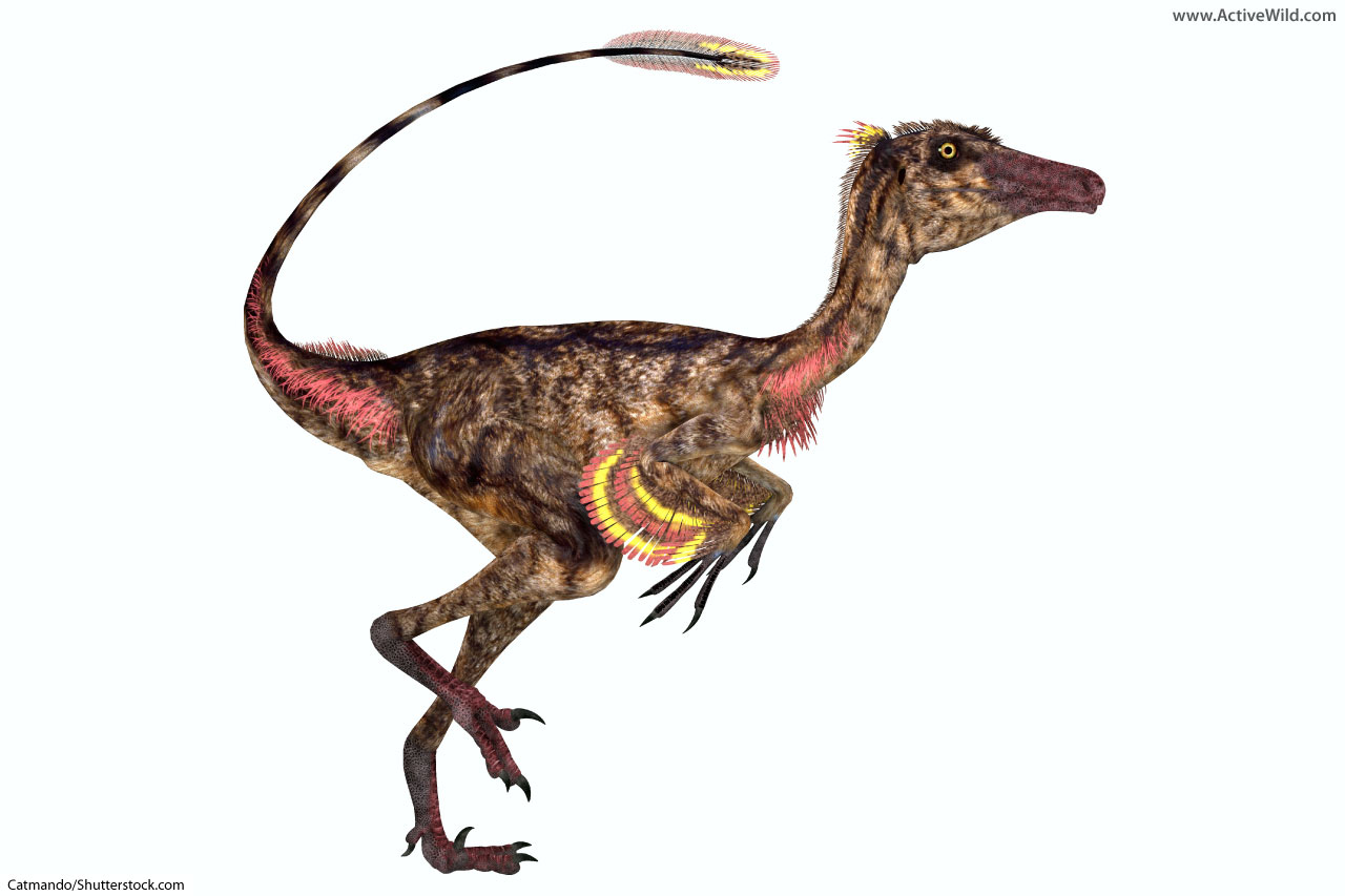 List Of Dinosaurs Dinosaur Names With Pictures Amp Information