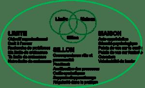 Développement Organisation