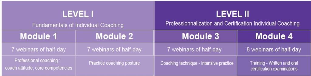 Online-Coaching-Program