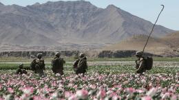 troops_afghanistan_opium