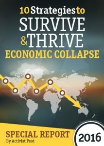 Economic_collapse_guide_cover01
