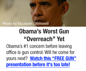 ObamaOverreach_300x250