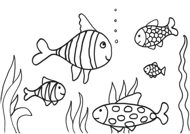 Fish Coloring Page 30 Printable  Activity Shelter