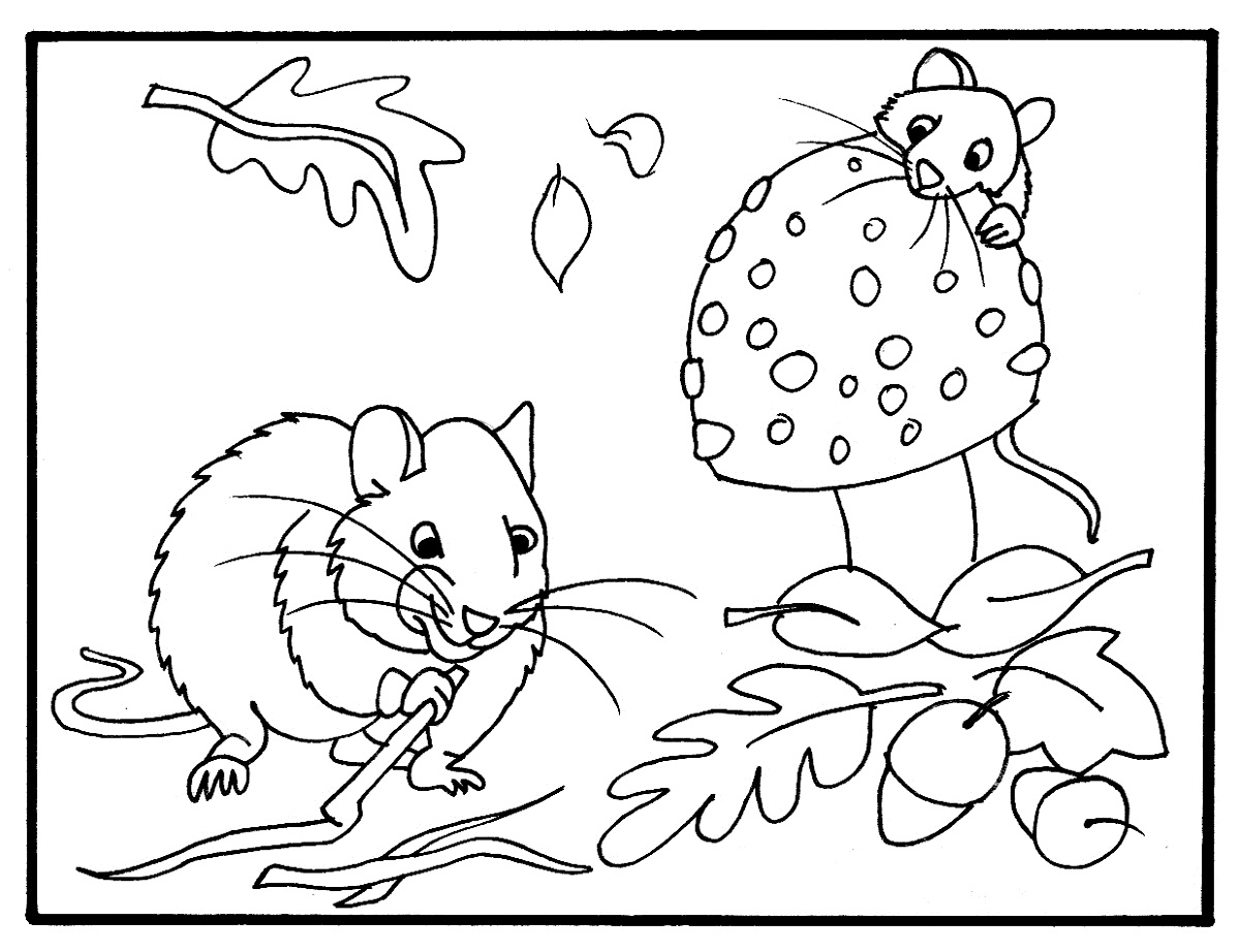 Fall Coloring Pages Printable