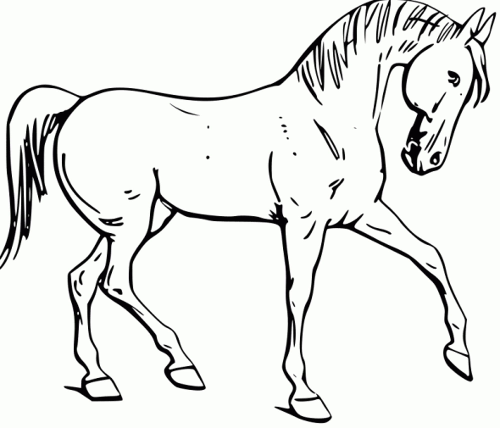 Free Horse Color Pages