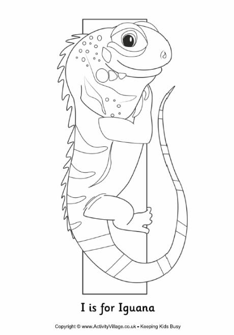 Template Letter I Iguana