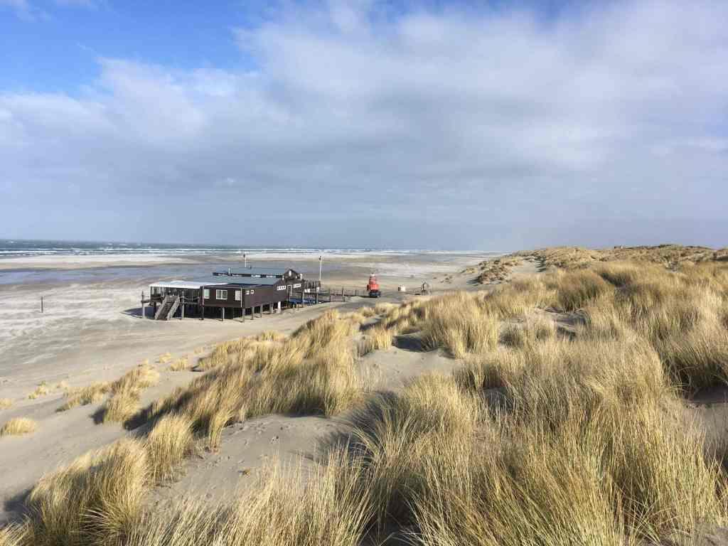 Dunes Terschelling